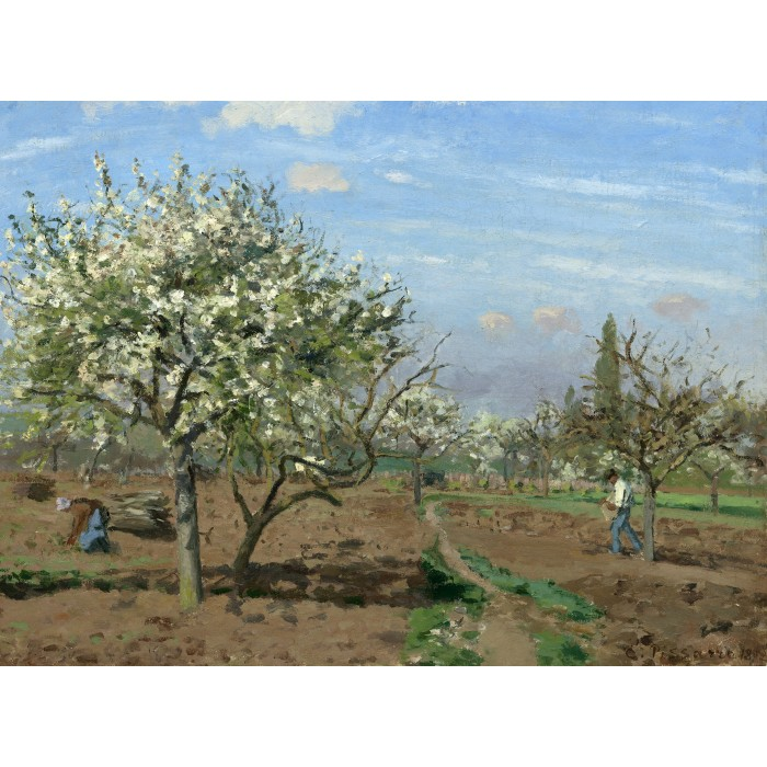 Camille Pissarro : Orchard in Bloom, Louveciennes, 1872