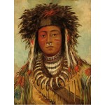 Puzzle  Grafika-02227 George Catlin: Boy Chief - Ojibbeway, 1843
