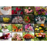 Puzzle  Grafika-02478 Collage - Blumen