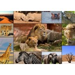 Puzzle  Grafika-T-00133 Collage - Wildlife