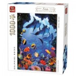 Puzzle   Dolphins Rocks