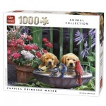 Puzzle   Puppies drinking Water