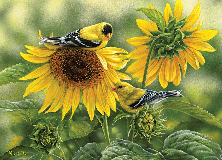 Rosemary Millette - Sunflowers and Goldfinches