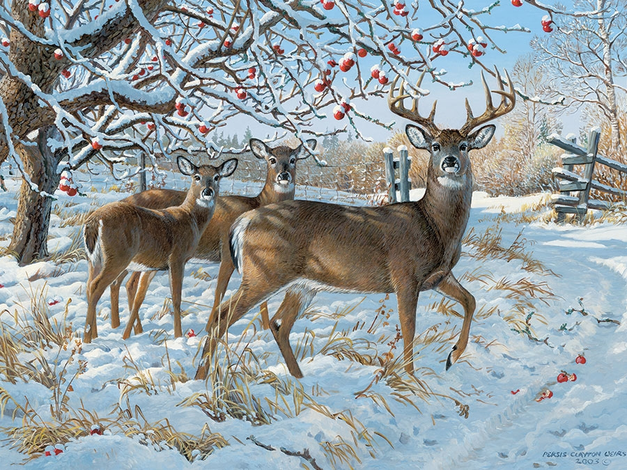 cobble-hill-outset-media-persis-clayton-weirs-winter-deer-1000-teile-puzzle-cobble-hill-57196