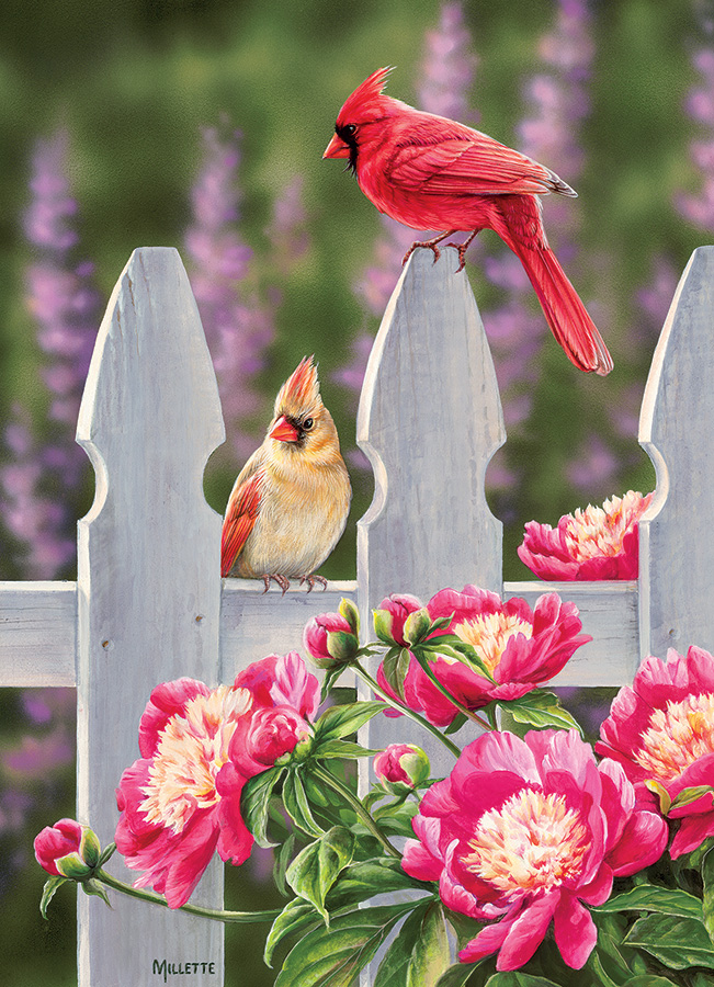 cobble-hill-outset-media-cardinals-and-peonies-1000-teile-puzzle-cobble-hill-80010