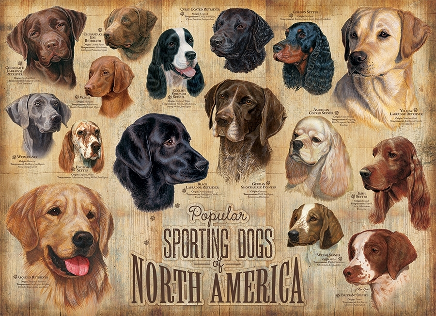 cobble-hill-outset-media-sporting-dogs-1000-teile-puzzle-cobble-hill-80022