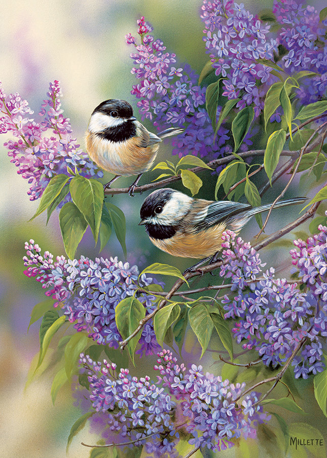 Cobble Hill / Outset Media Chickadee Duo 35 Teile Puzzle Cobble-Hill-58877