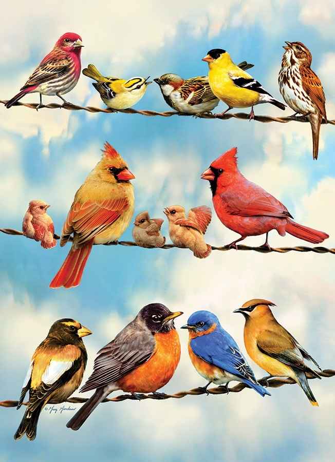 Cobble Hill / Outset Media Blue Sky Birds 35 Teile Puzzle Cobble-Hill-58888