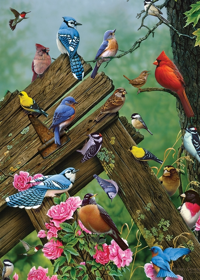 cobble-hill-outset-media-wildbird-gathering-35-teile-puzzle-cobble-hill-58889