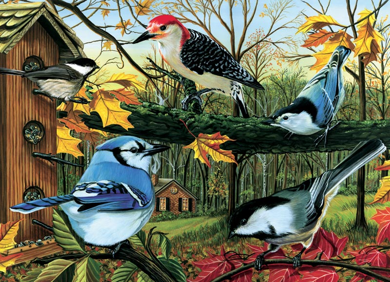 cobble-hill-outset-media-blue-jay-and-friends-1000-teile-puzzle-cobble-hill-80053