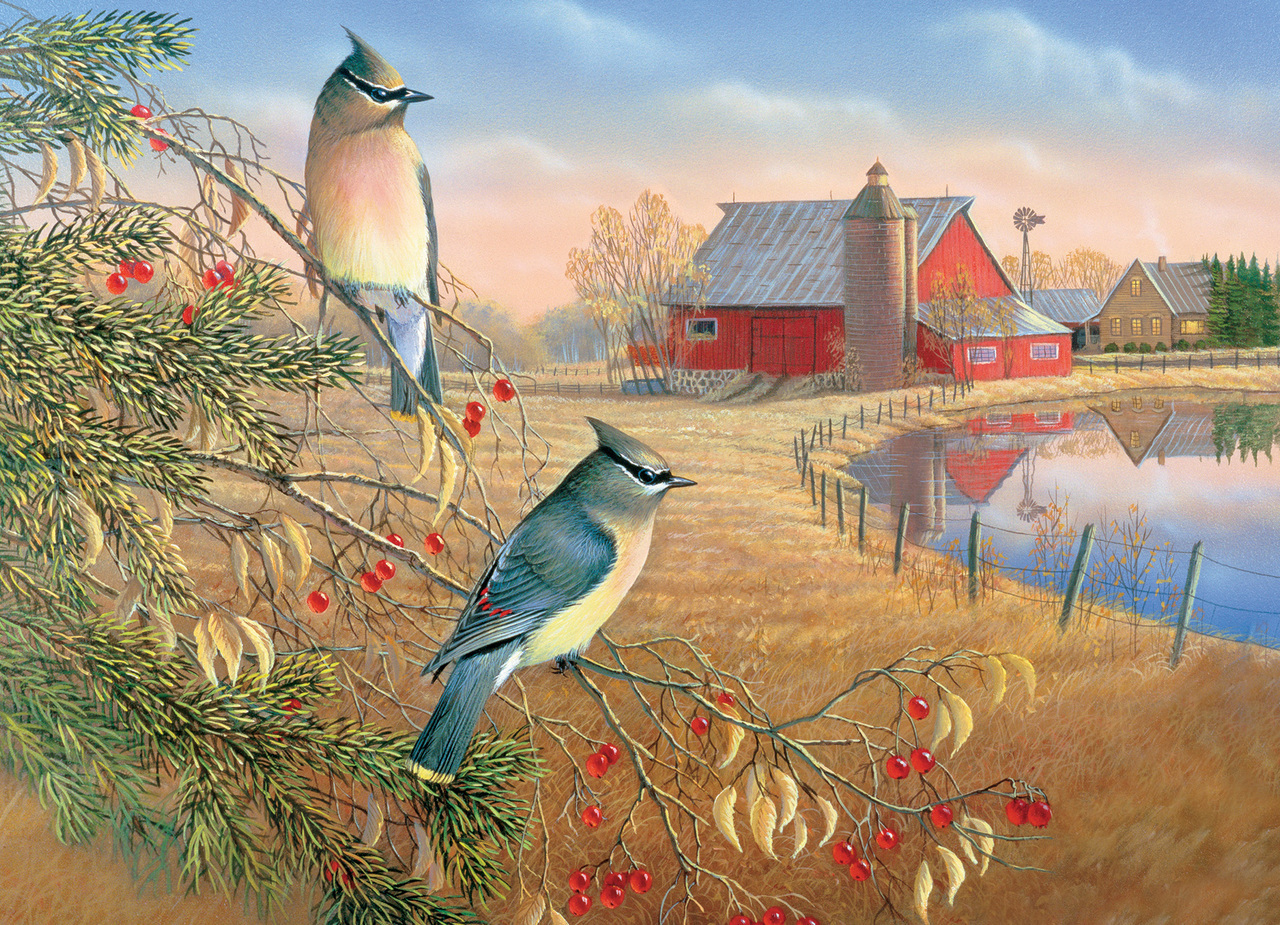 cobble-hill-outset-media-cedar-waxwings-1000-teile-puzzle-cobble-hill-80189