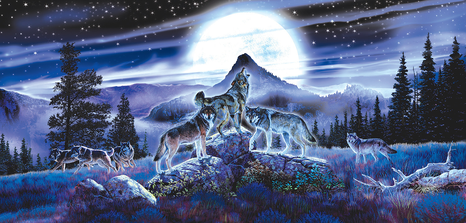 sunsout-al-agnew-night-wolves-1000-teile-puzzle-sunsout-34626