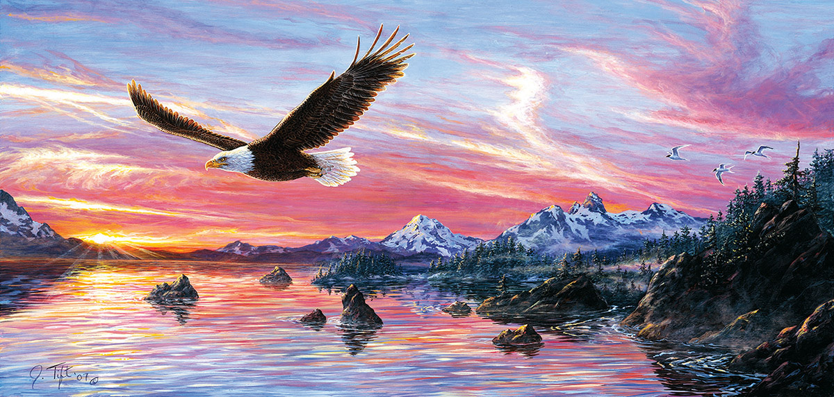 Jeff Tift - Silent Wings of Freedom