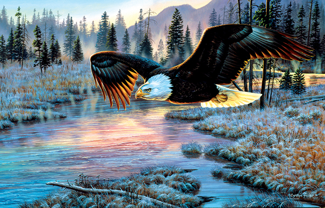 Cynthie Fisher - Eagle Dawn