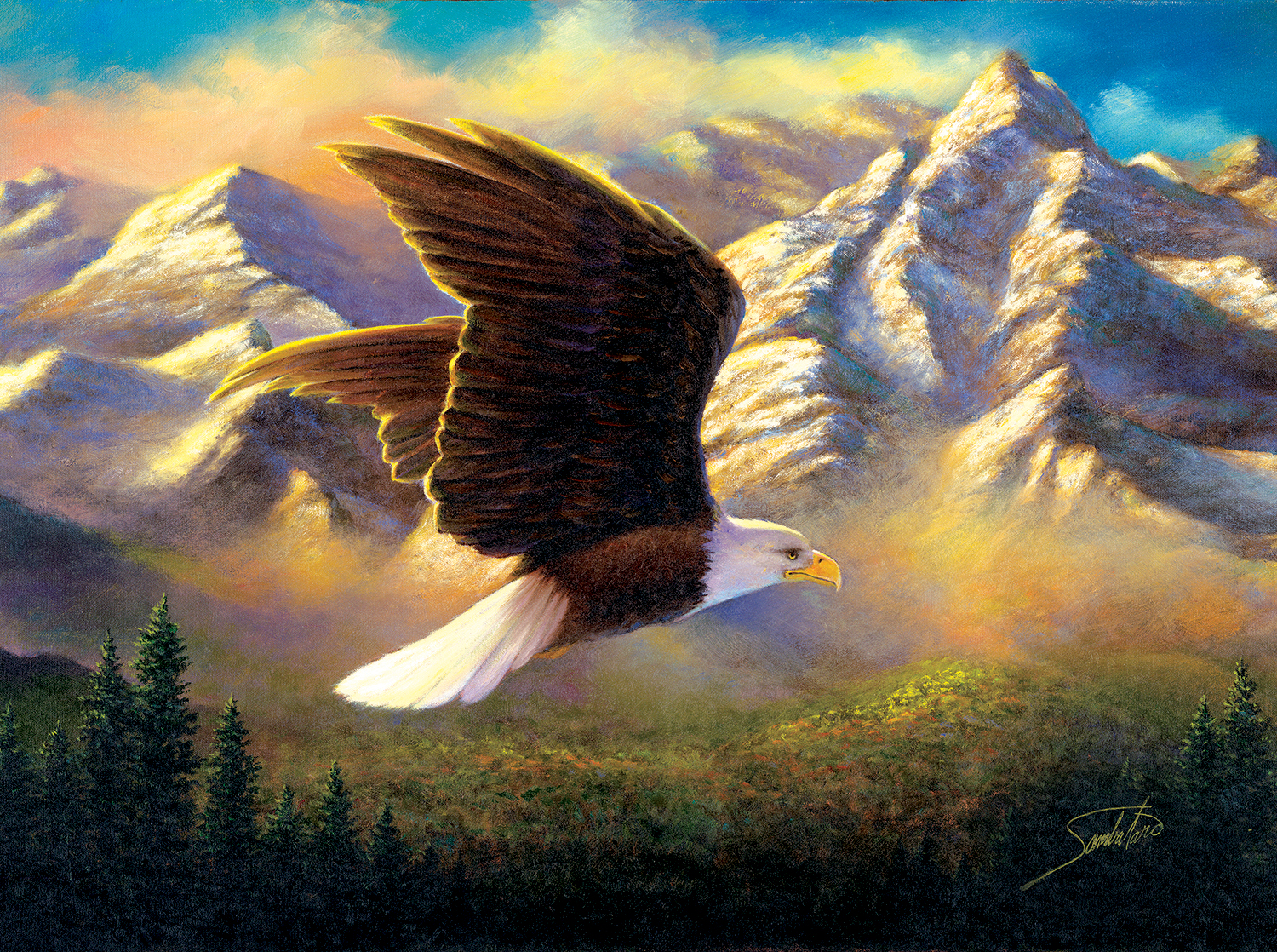 sunsout-abraham-hunter-flying-high-1000-teile-puzzle-sunsout-69636