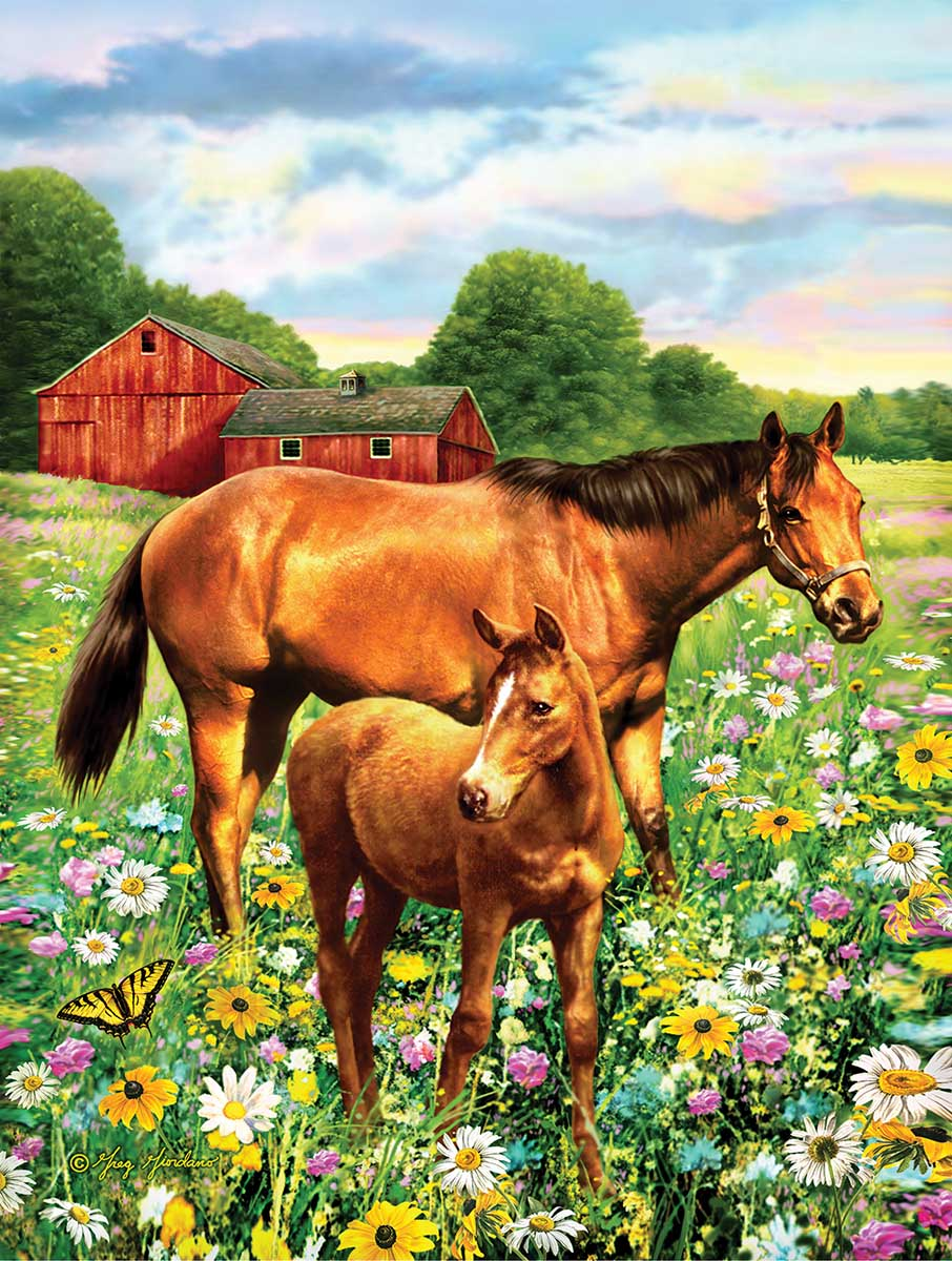 sunsout-xxl-teile-mare-and-foal-500-teile-puzzle-sunsout-37174