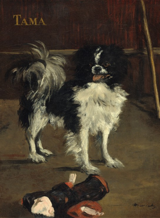 grafika-edouard-manet-tama-the-japanese-dog-1875-2000-teile-puzzle-grafika-01745