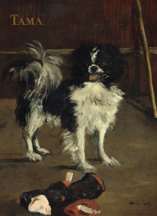 grafika-edouard-manet-tama-the-japanese-dog-1875-300-teile-puzzle-grafika-01747
