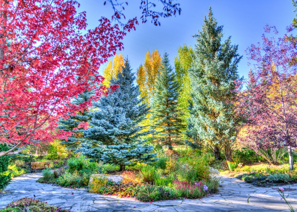 grafika-bunter-wald-colorado-usa-500-teile-puzzle-grafika-t-00854
