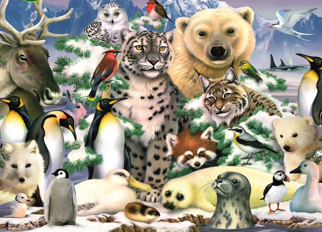king-international-artic-life-1000-teile-puzzle-king-puzzle-05485