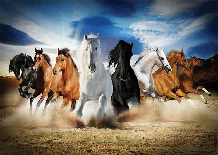 gold-puzzle-full-speed-gallop-2000-teile-puzzle-gold-puzzle-61468
