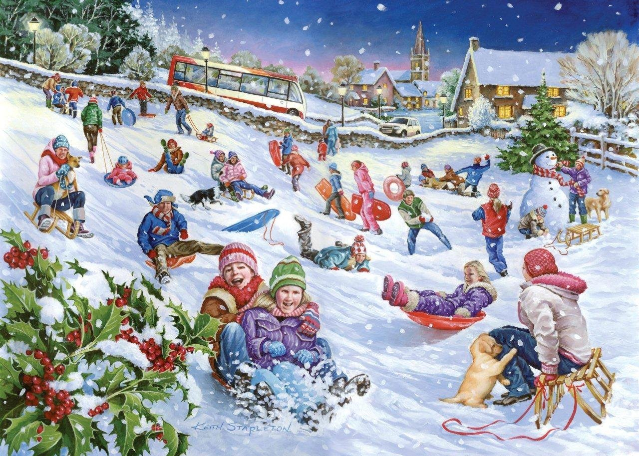 the-house-of-puzzles-sledging-1000-teile-puzzle-the-house-of-puzzles-2933