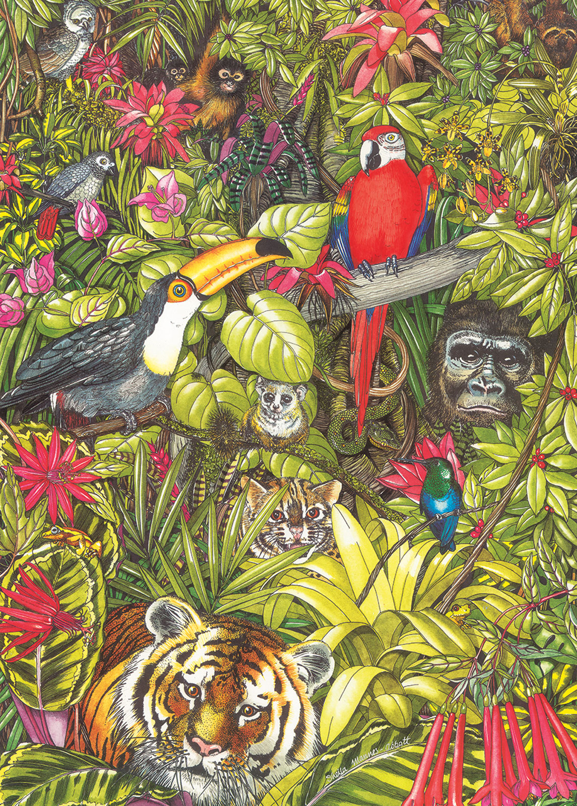 otter-house-puzzle-rainforests-of-the-world-1000-teile-puzzle-otter-house-puzzle-74128