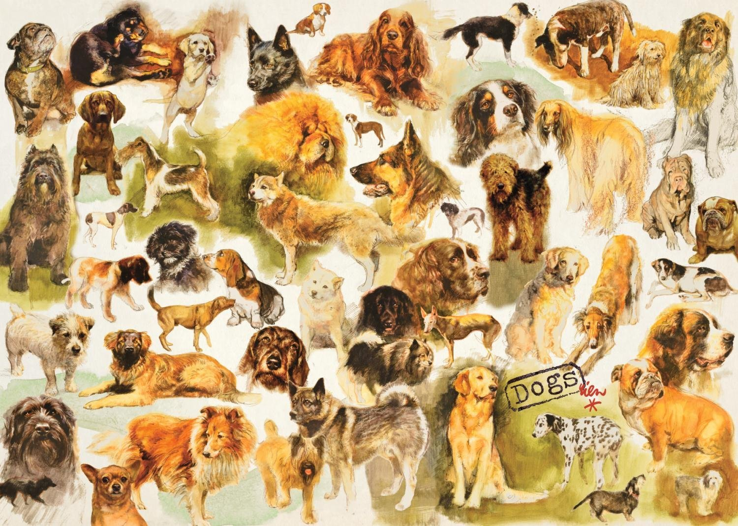 jumbo-collection-mit-dogs-poster-1000-teile-puzzle-jumbo-18596