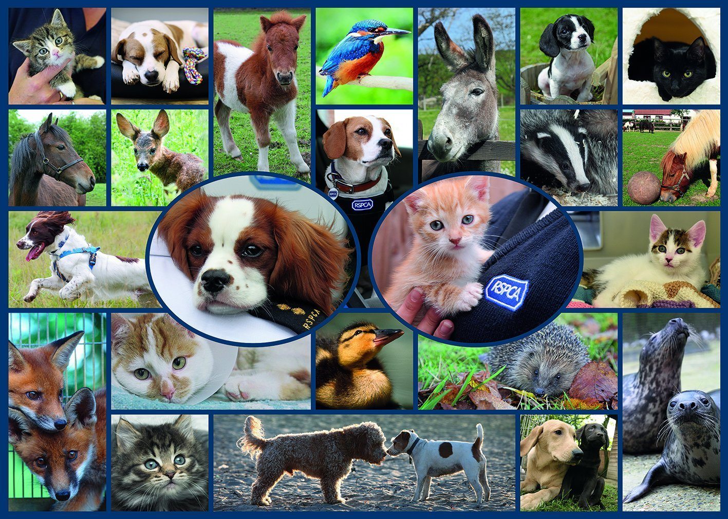 gibsons-all-creatures-great-small-1000-teile-puzzle-gibsons-g7086, 13.46 EUR @ puzzle-de