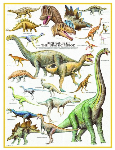 eurographics-dinosaurier-des-jura-1000-teile-puzzle-eurographics-6000-0099