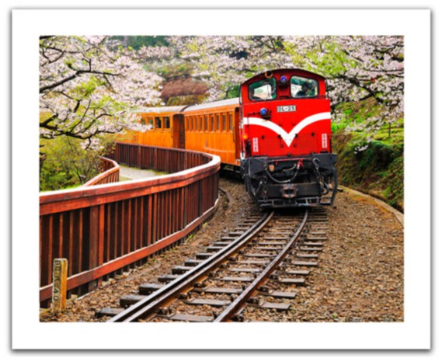 pintoo-puzzle-aus-kunststoff-forest-train-in-alishan-national-park-taiwan-500-teile-puzzle-pintoo
