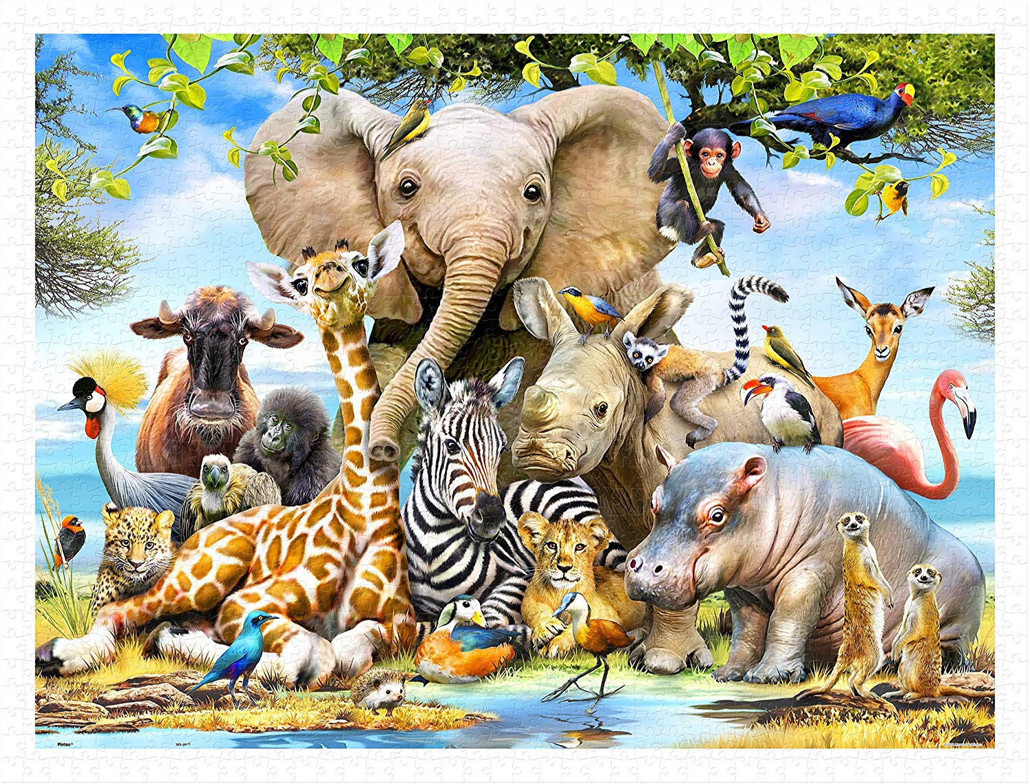 pintoo-puzzle-aus-kunststoff-howard-robinson-africa-smile-1200-teile-puzzle-pintoo-h2043