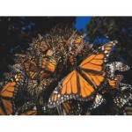 Puzzle  New-York-Puzzle-NG1987 XXL Teile - Monarch Butterflies