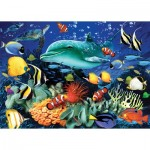 Puzzle   Coral Reef