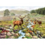 Puzzle  Otter-House-Puzzle-74136 National Park