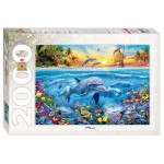 Puzzle   Dolphin Paradise